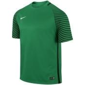 Nike Gardien Jsy men's T shirt in Green