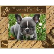 Giftworks Plus DBA0080 French Bulldog, Alder Wood Frame, 8 x 10 In