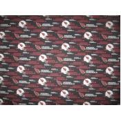 DecorDogz Galore A02XL Arizona XL Bandana