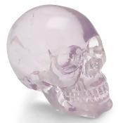 American Shifter ASCSN06063 Crystal Skull Custom Shift Knob