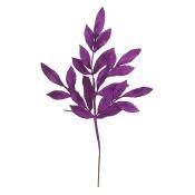 22 BayLeaf Spray 12/Bg- Purple